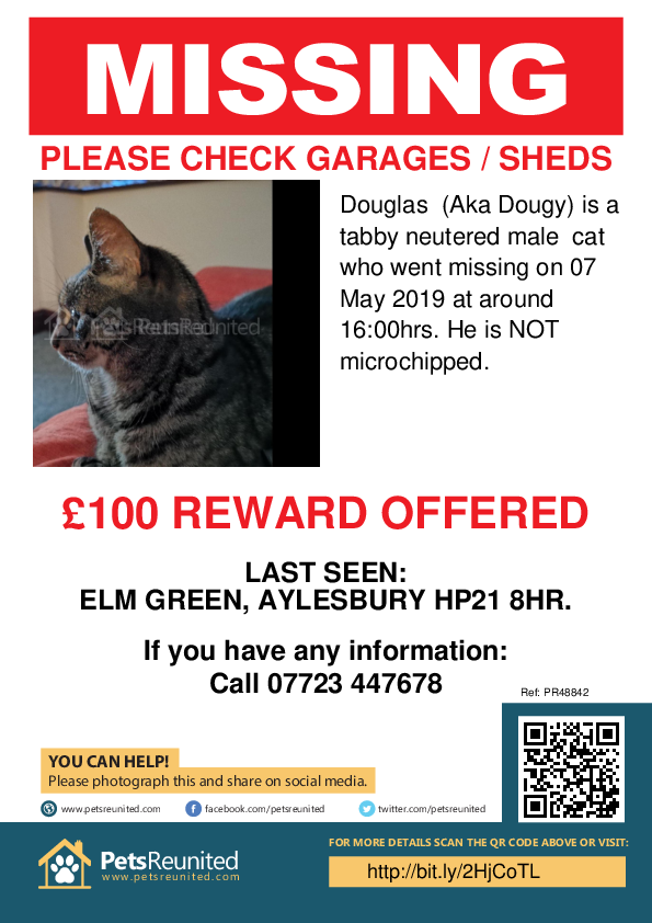 Lost pet poster - Lost cat: Tabby cat called Douglas  (Aka Dougy)