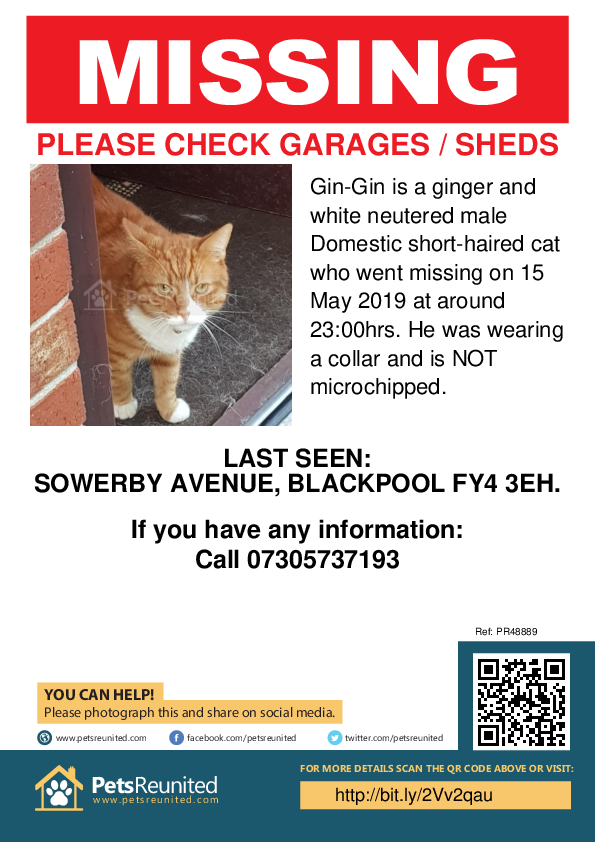 Lost pet poster - Lost cat: Ginger and white cat called Gin-Gin