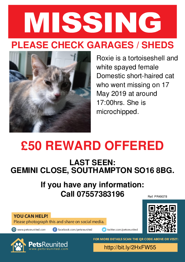 Lost pet poster - Lost cat: Tortoiseshell and white cat called Roxie
