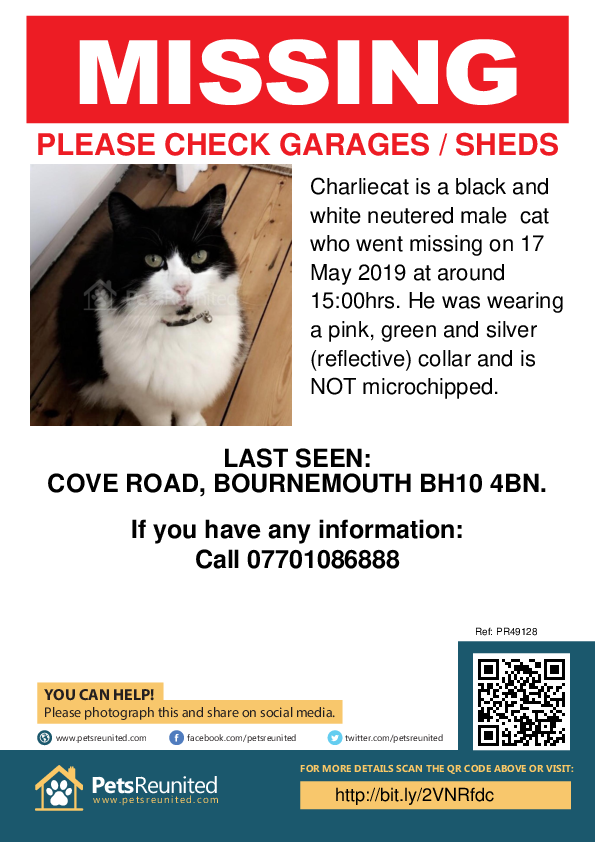 Lost pet poster - Lost cat: Black and white cat called Charliecat