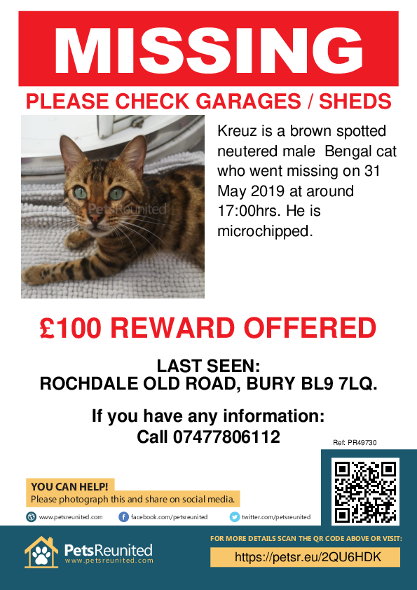 Lost pet poster - Lost cat: Brown Spotted Bengal cat called Kreuz