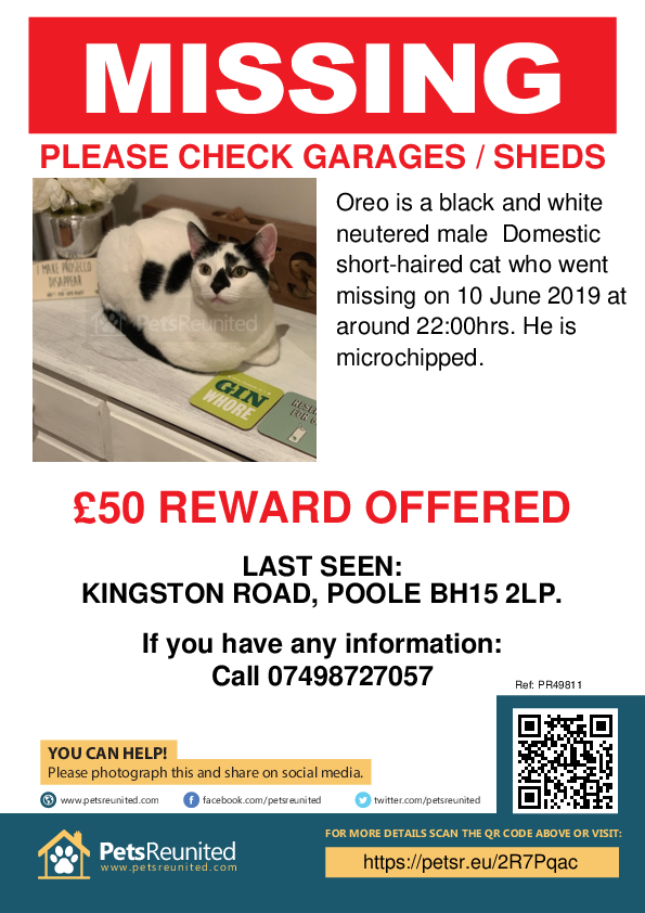 Lost pet poster - Lost cat: Black and white cat called Oreo