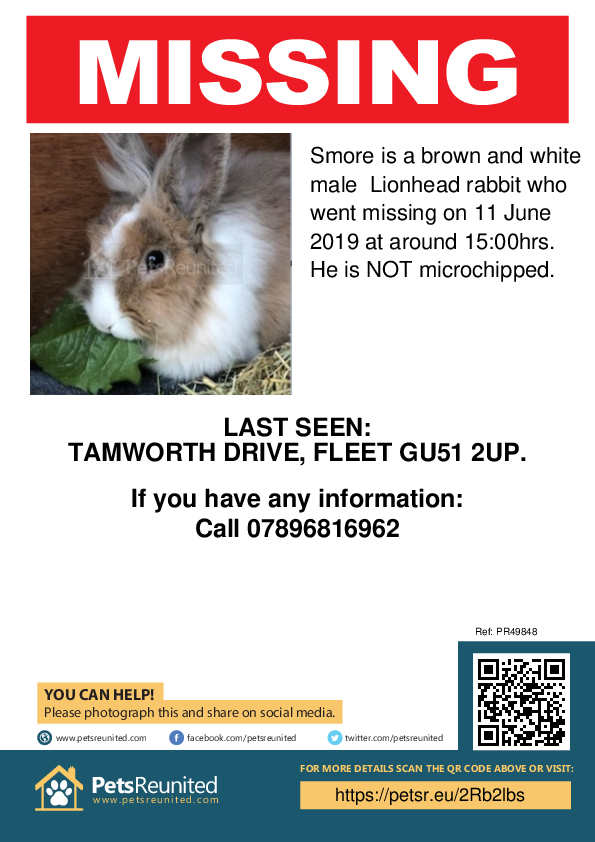 Lost pet poster - Lost rabbit: Brown and white Lionhead rabbit called Smore