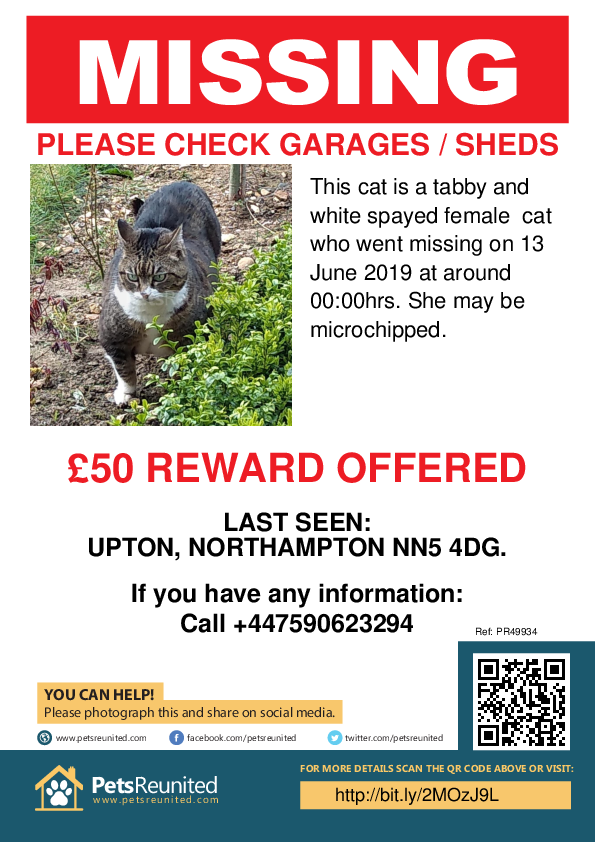 Lost pet poster - Lost cat: Tabby and white cat [name witheld]