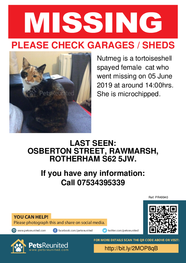 Lost pet poster - Lost cat: Tortoiseshell cat called Nutmeg