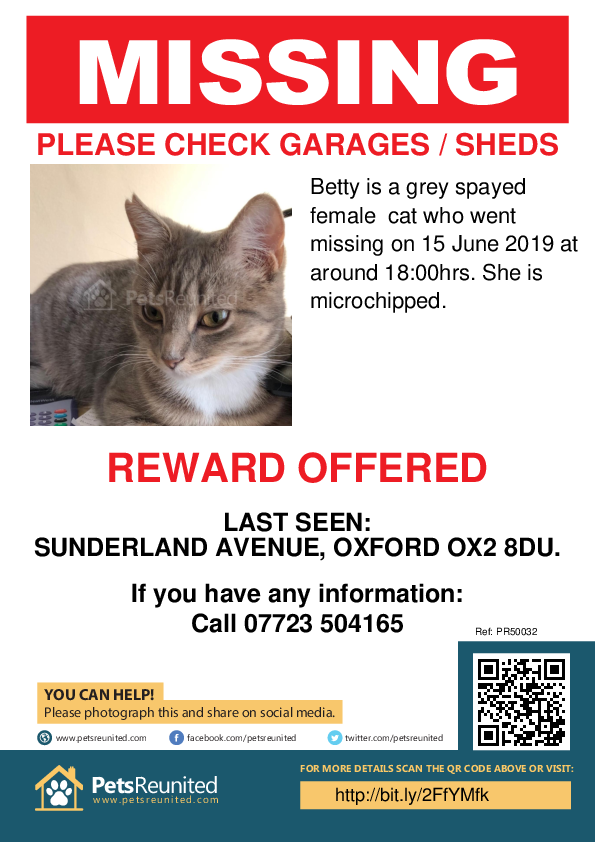 Lost pet poster - Lost cat: Grey cat called Betty