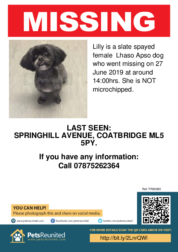 Lost pet poster - Lost dog: Slate Lhaso Apso dog called Lilly