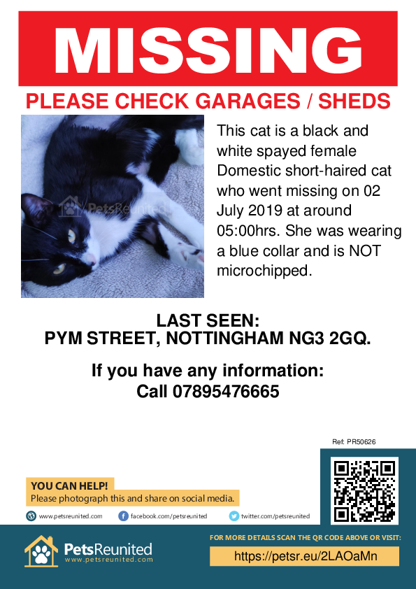 Lost pet poster - Lost cat: Black and white cat [name witheld]