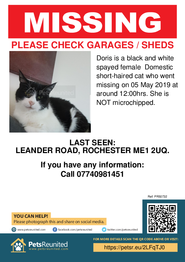 Lost pet poster - Lost cat: Black and white cat called Doris