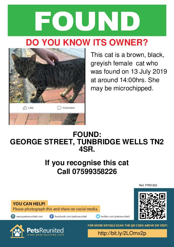 Found pet poster - Found cat: Brown, black, greyish cat