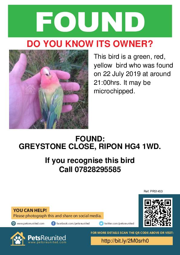 Found pet poster - Found deceased Green, red, yellow bird