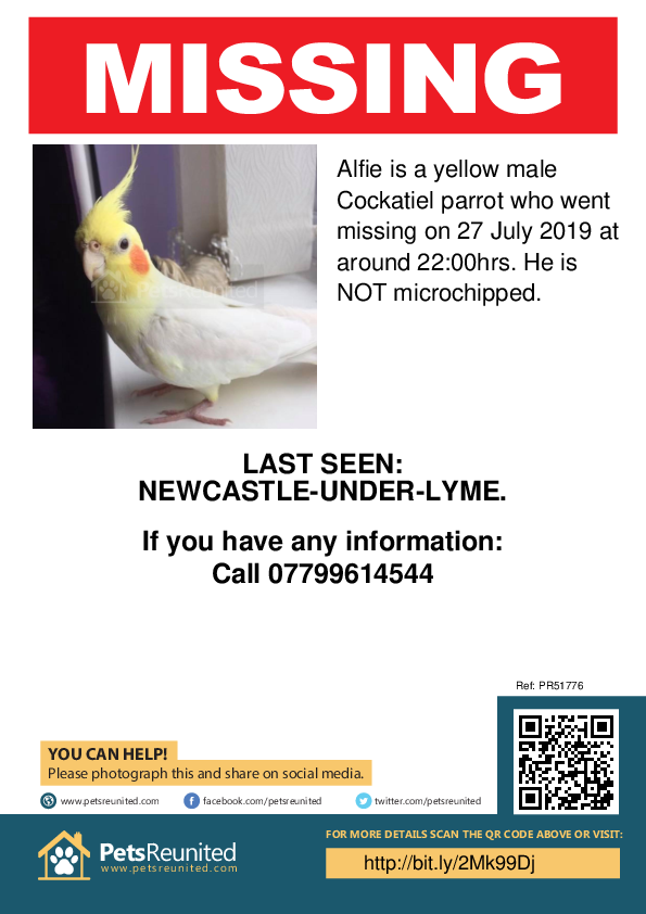 Lost pet poster - Lost parrot: Yellow Cockatiel parrot called Alfie
