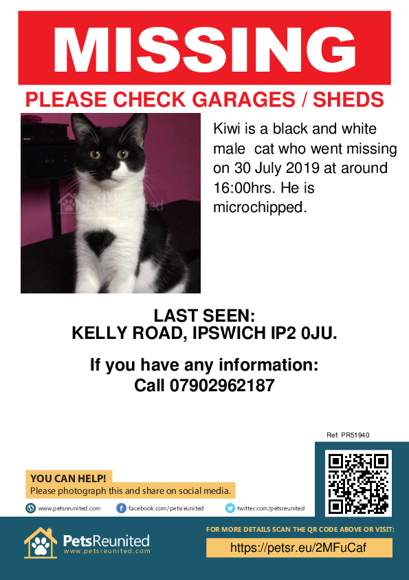 Lost pet poster - Lost cat: Black and white cat called Kiwi