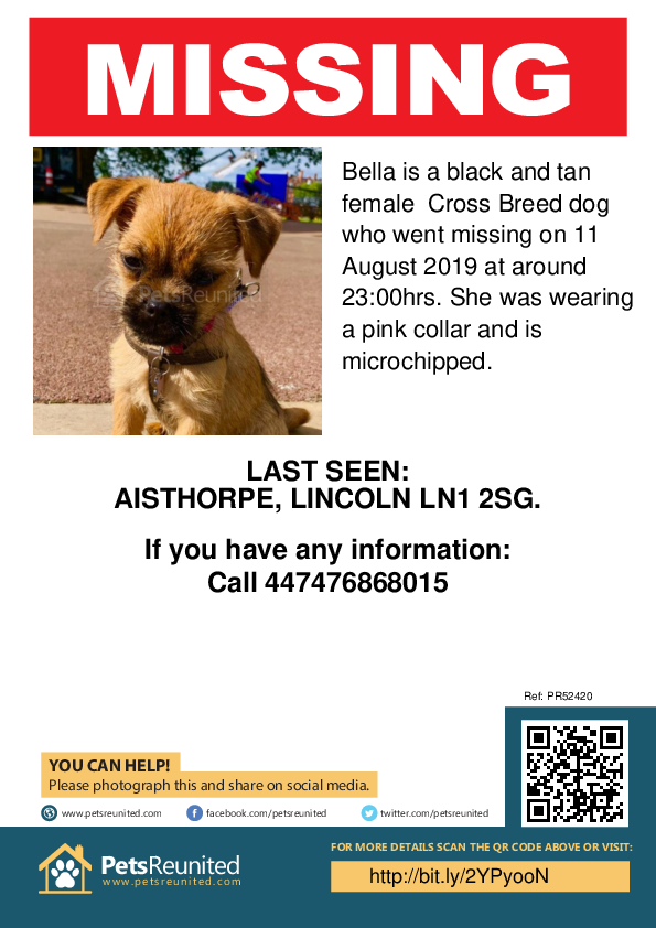 Lost pet poster - Lost dog: Black and Tan dog called Bella