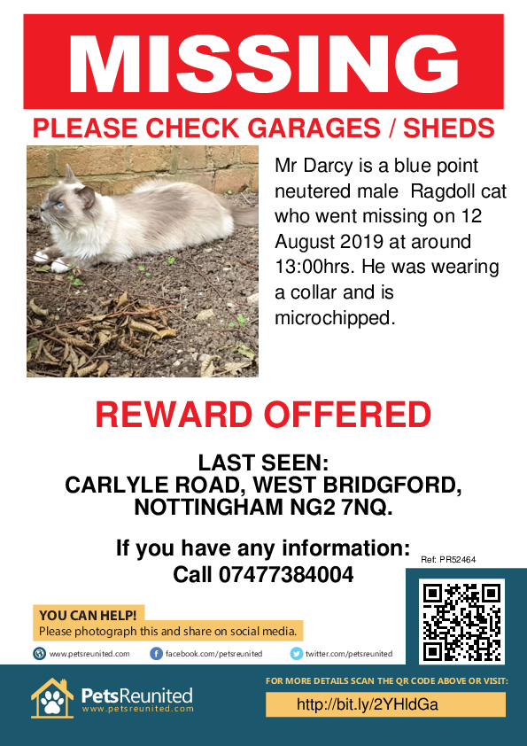 Lost pet poster - Lost cat: Blue point Ragdoll cat called Mr Darcy