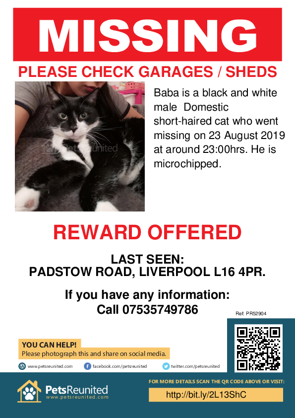 Lost pet poster - Lost cat: Black and white cat called Baba
