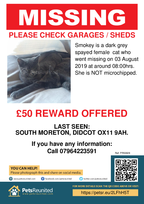 Lost pet poster - Lost cat: dark grey cat called Smokey