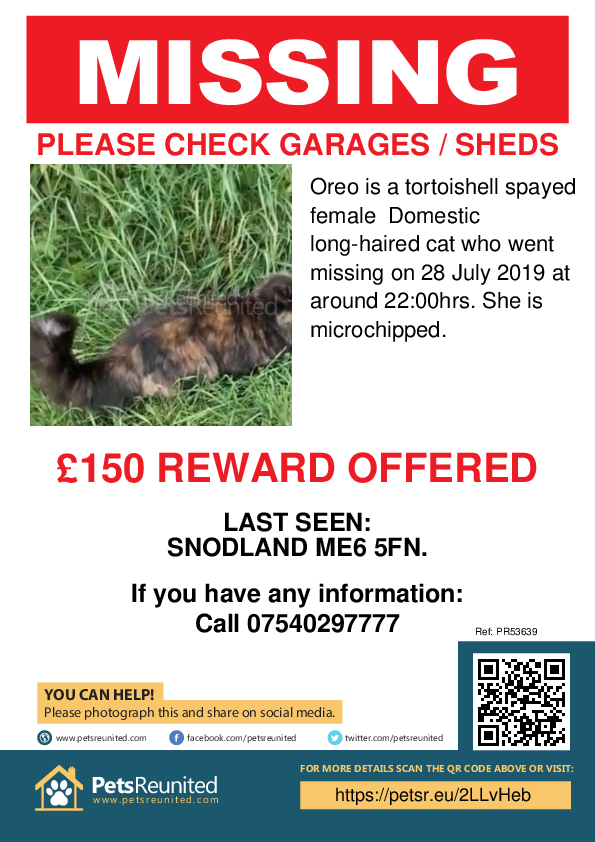 Lost pet poster - Lost cat: Tortoishell cat called Oreo