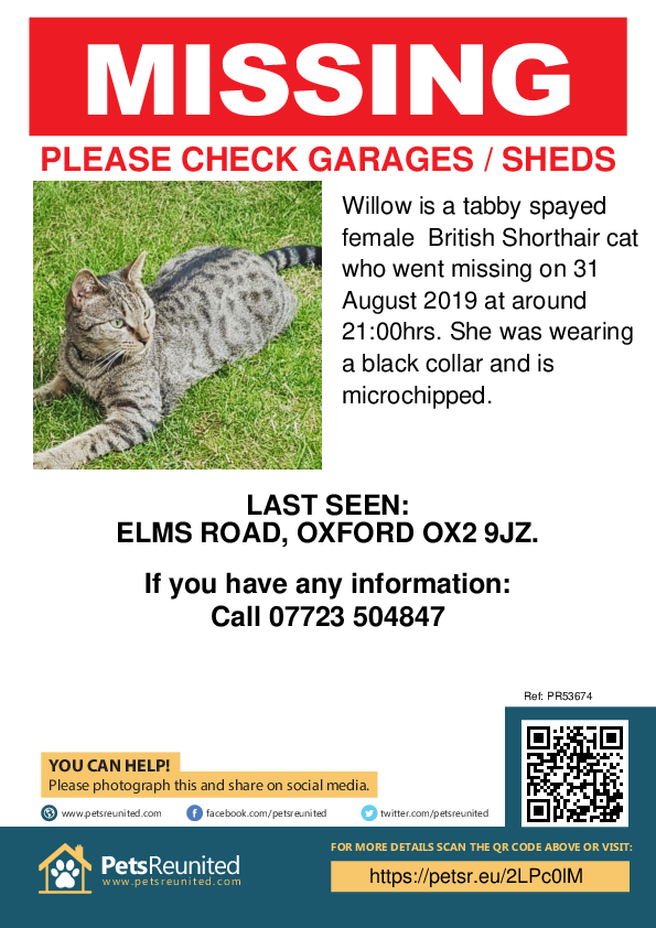 Lost pet poster - Lost cat: Tabby British Shorthair cat called Willow