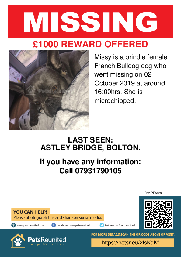Lost pet poster - Lost dog: Brindle French Bulldog dog called Missy