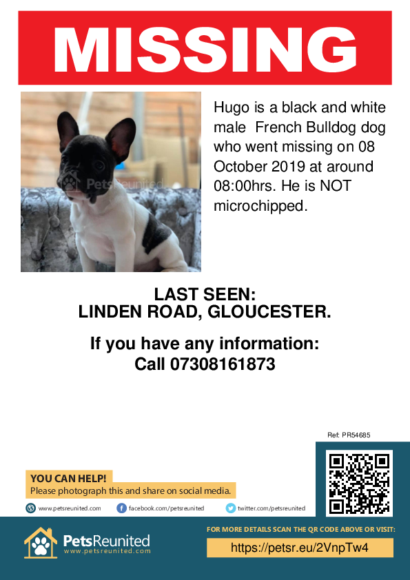 Lost pet poster - Lost dog: Black and white French Bulldog dog called Hugo