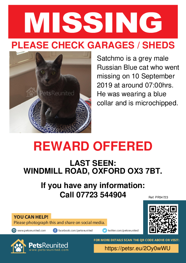 Lost pet poster - Lost cat: Grey Russian Blue cat called Satchmo