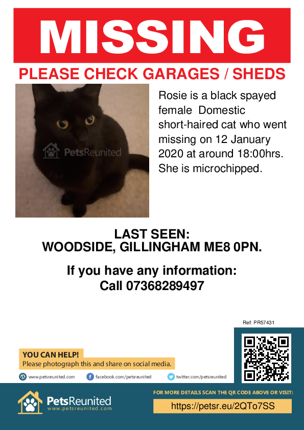 Lost pet poster - Lost cat: Black cat called Rosie