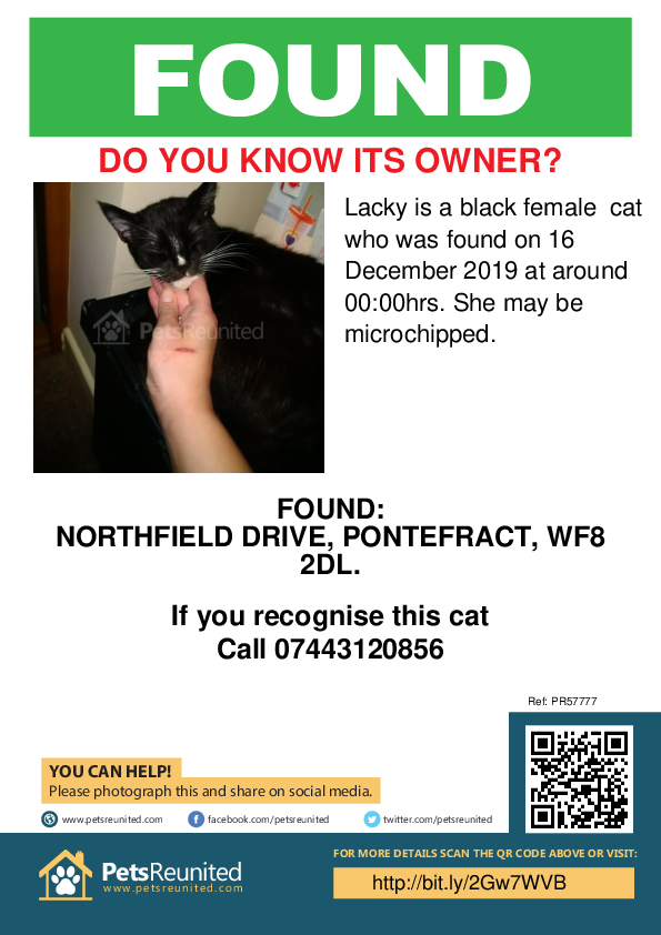 Found pet poster - Found cat: Black cat called Lacky