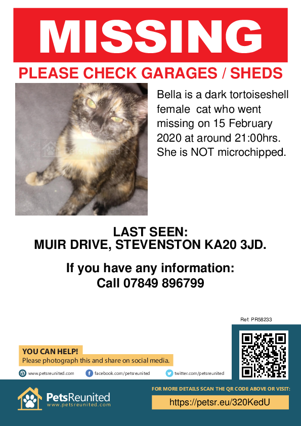 Lost pet poster - Lost cat: Dark tortoiseshell cat called Bella