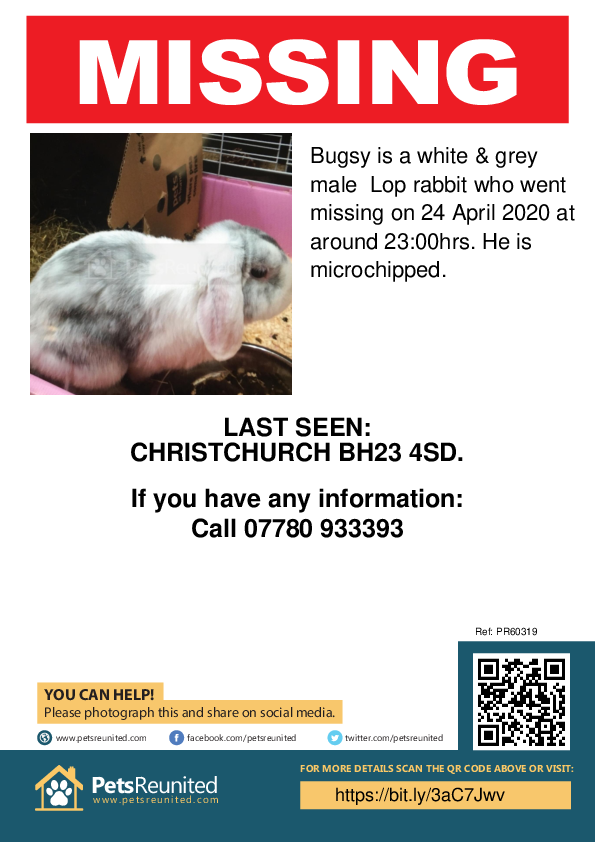 Lost pet poster - Lost rabbit: White & grey Lop rabbit called Bugsy