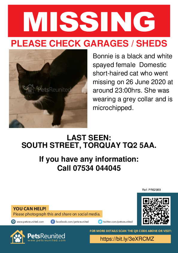 Lost pet poster - Lost cat: Black and white cat called Bonnie