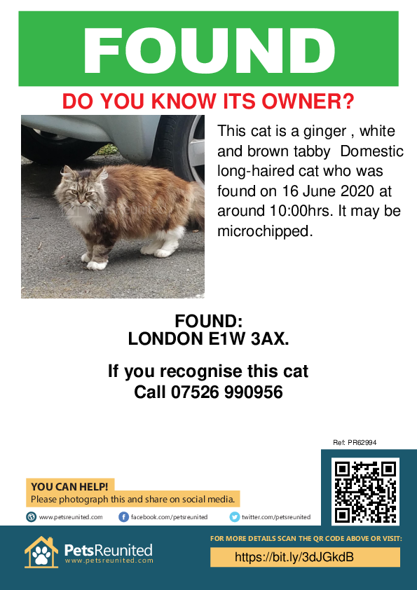 Found pet poster - Found cat: Ginger , white and brown tabby cat