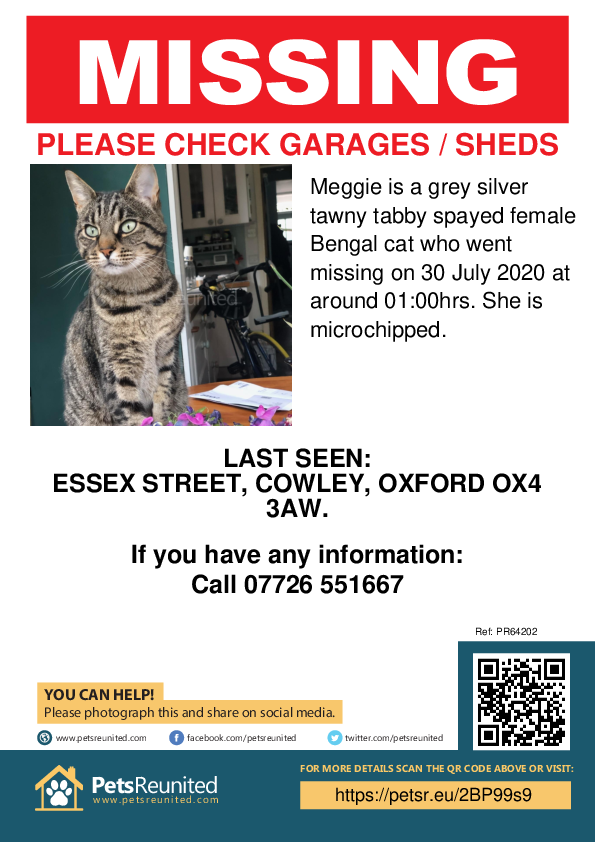 Lost pet poster - Lost cat: grey silver tawny tabby Bengal cat called Meggie