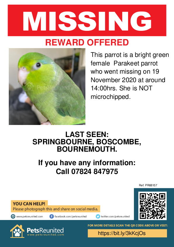 Lost pet poster - Lost parrot: Bright Green Parakeet parrot [name withheld]