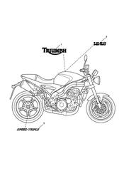 triumph motorcycle  Speed Triple VIN: 210445 to 461331 triumph parts section Bodywork  Decals  333179 gt