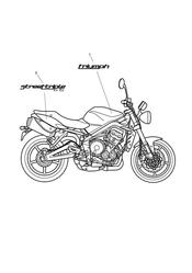 triumph motorcycle  Street Triple to VIN 560476 triumph parts section Bodywork  Decals 480782 gt