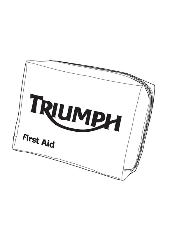 triumph motorcycle triumph parts section