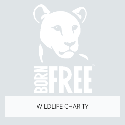 Born Free Charity