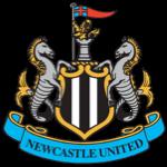 Logo for Newcastle