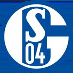 Logo for Schalke
