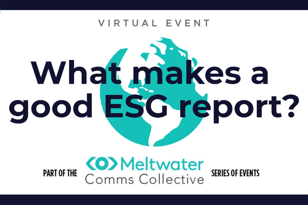 What makes a good ESG report?