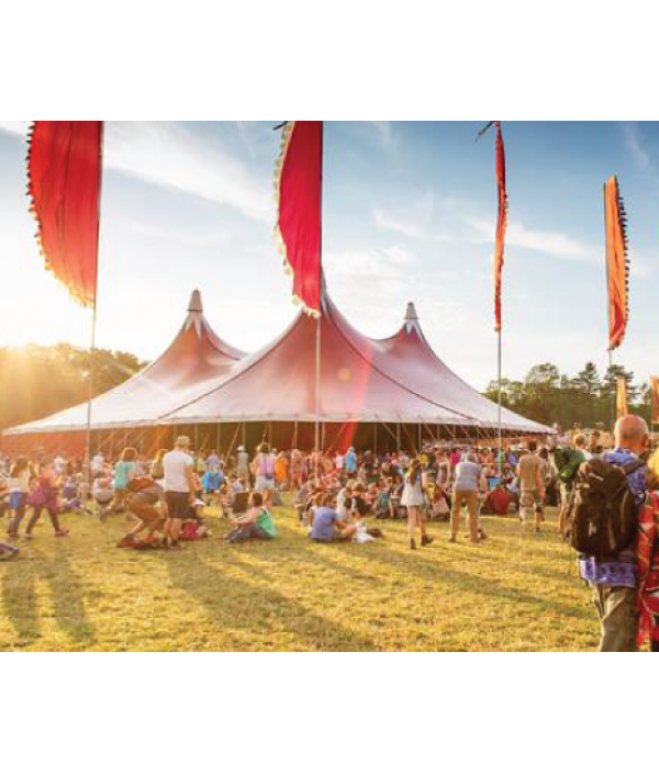 womad-festival-tickets-34297.png