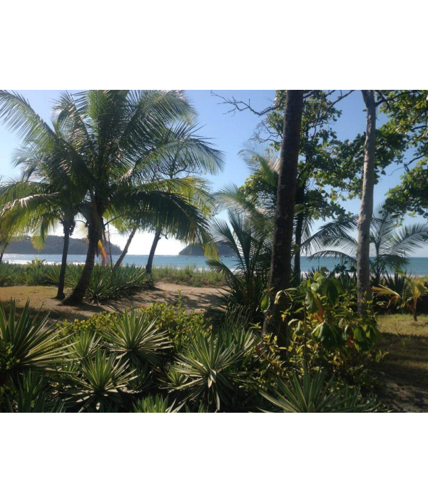 all-inclusive-retreat---costa-rica-18570.png