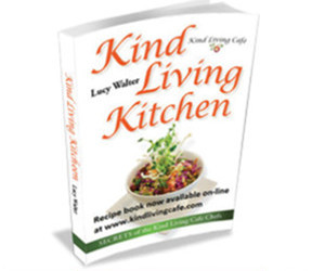 Raw recipes archives the raw food institute of australia 1 2 11 next forumfinder Choice Image