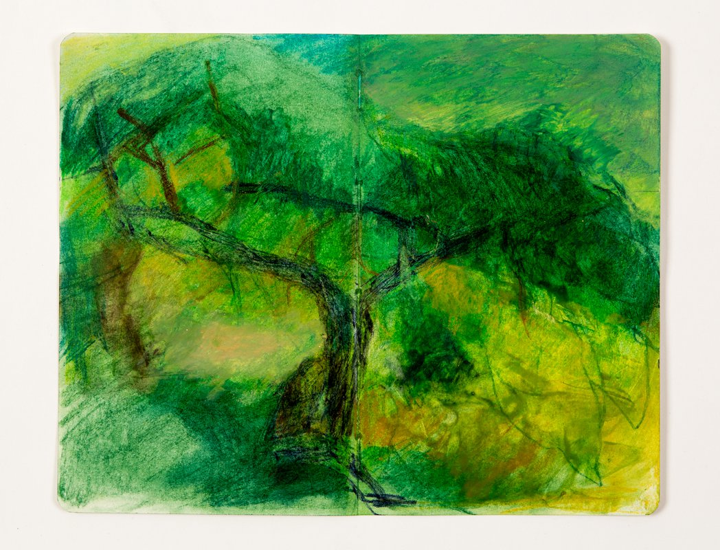 Another Tree<span>Copyright Lindsey Mclean</span>