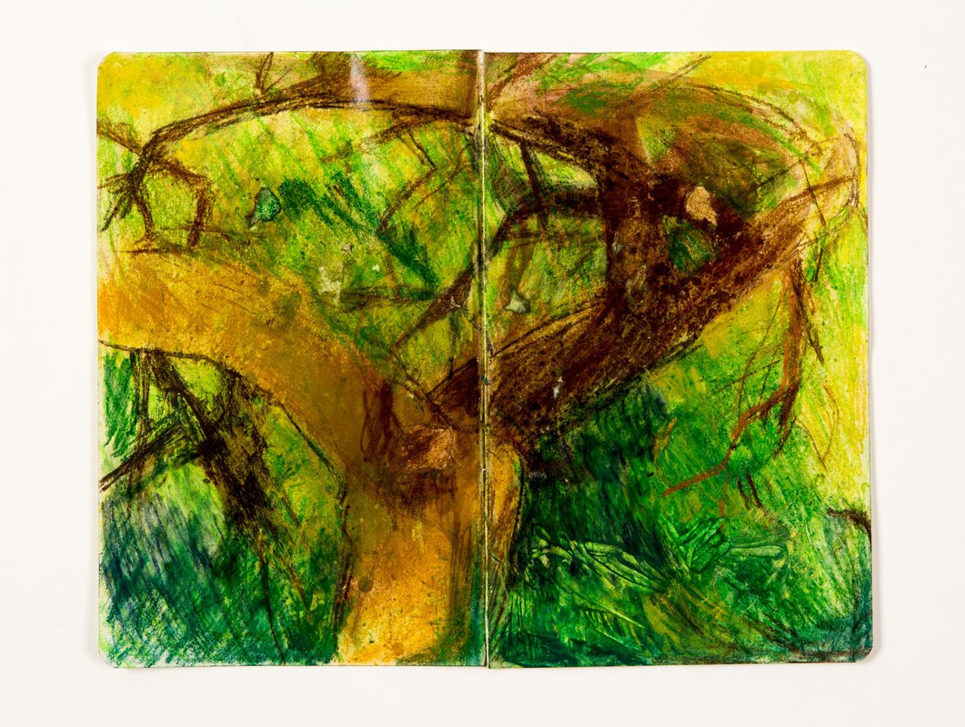 Branches<span>Copyright Lindsey Mclean</span>