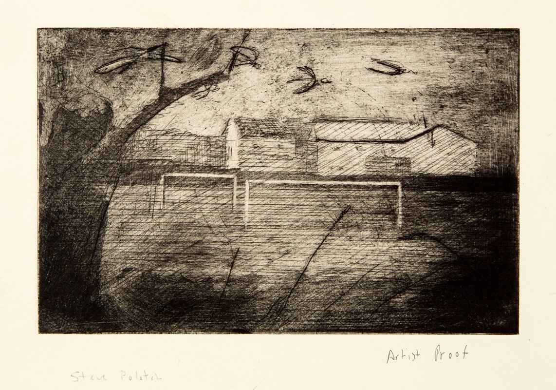 Field with Birds<span>Copyright Stephen Polatch</span>
