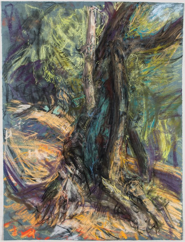 <h3>Emerald Skin</h3><span>2015-16 | Pastel on paper | 63 x 48 cm</span>