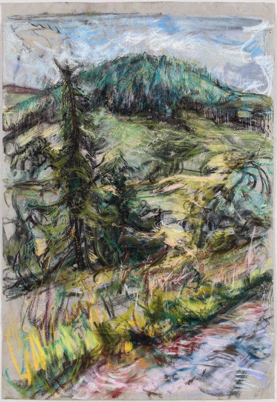 <h3>Glenmuick</h3><span>2015-16 | Pastel on paper | 75 x 51.5 cm</span>