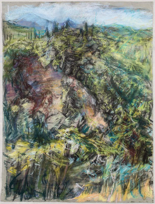 <h3>Hillside</h3><span>2015-16 | Pastel on paper | 63 x 48 cm</span>